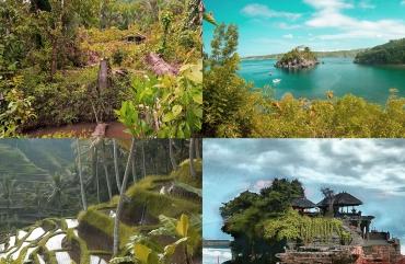 Райський відпочинок в Індонезії