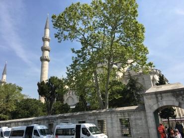 Туреччина Стамбул 121