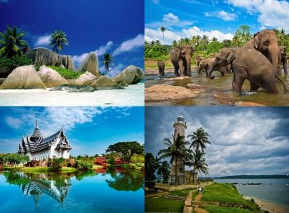 экзотический тур в Шри-ланку